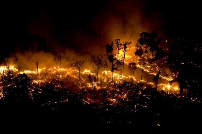 La furia predatoria di Bolsonaro e del capitalismo internazionale bruciano l'Amazzonia