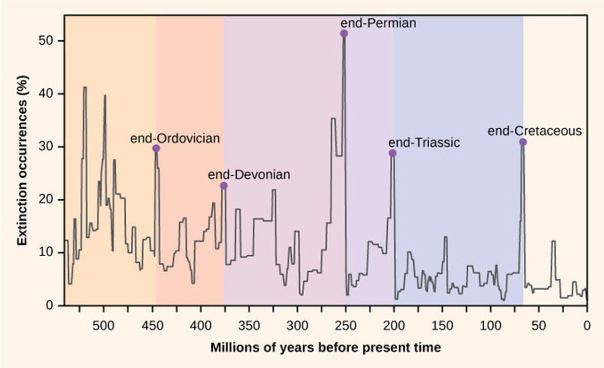 Tempo geologico appuntamenti assoluti