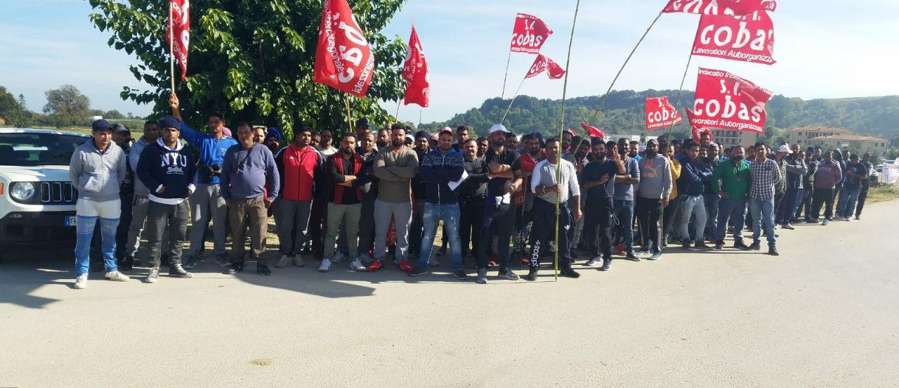 Ambruosi & Viscardi: i lavoratori chiedono un contratto vero, l'azienda cerca di cacciarli in massa