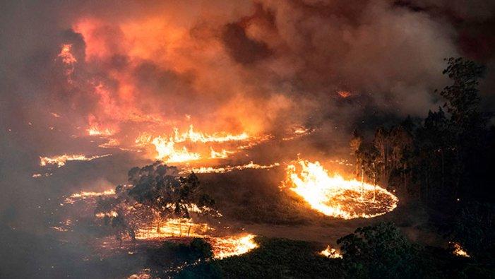 La nostra casa è in fiamme: la crisi climatica esplode ancora in Australia